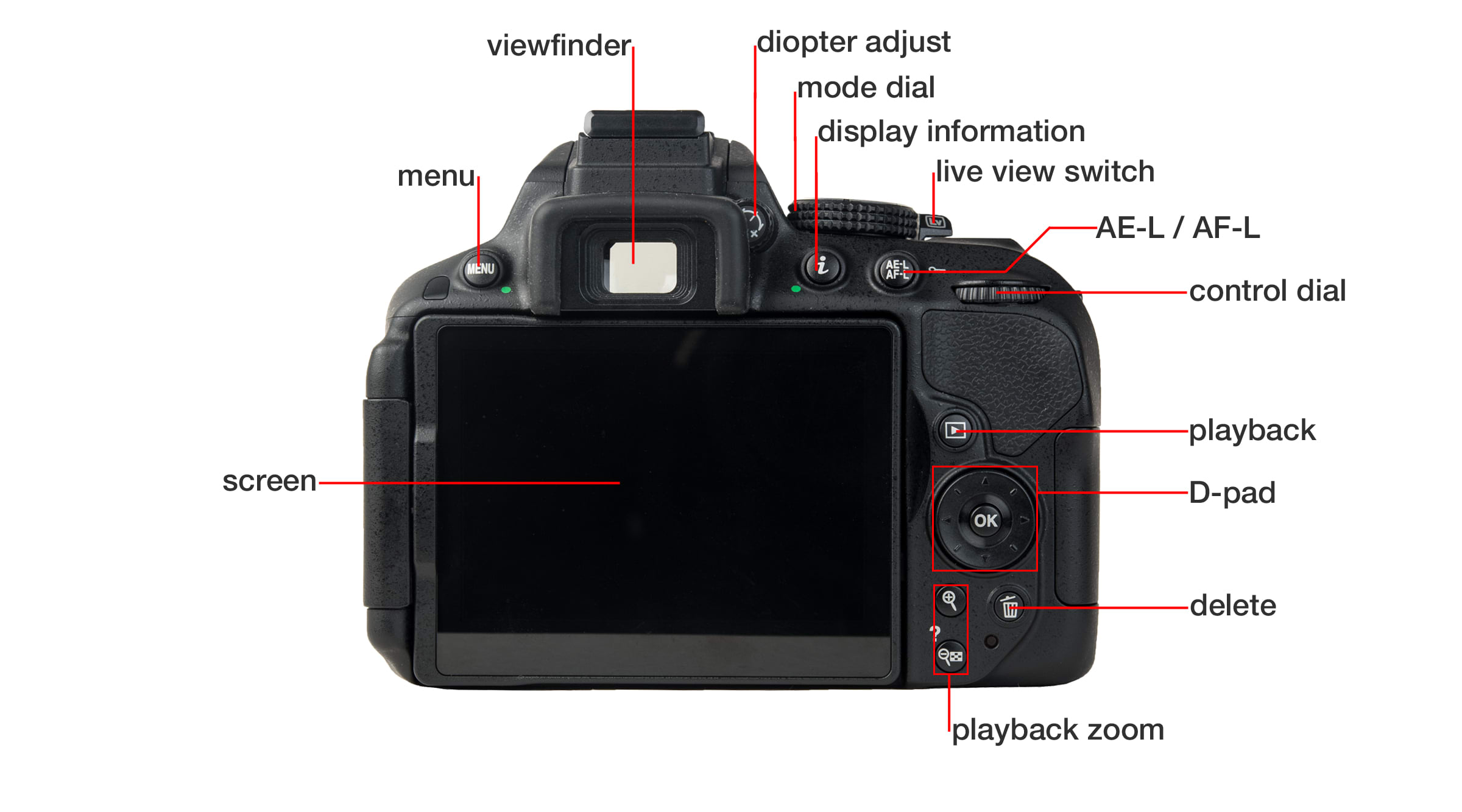 Back of Nikon D5300