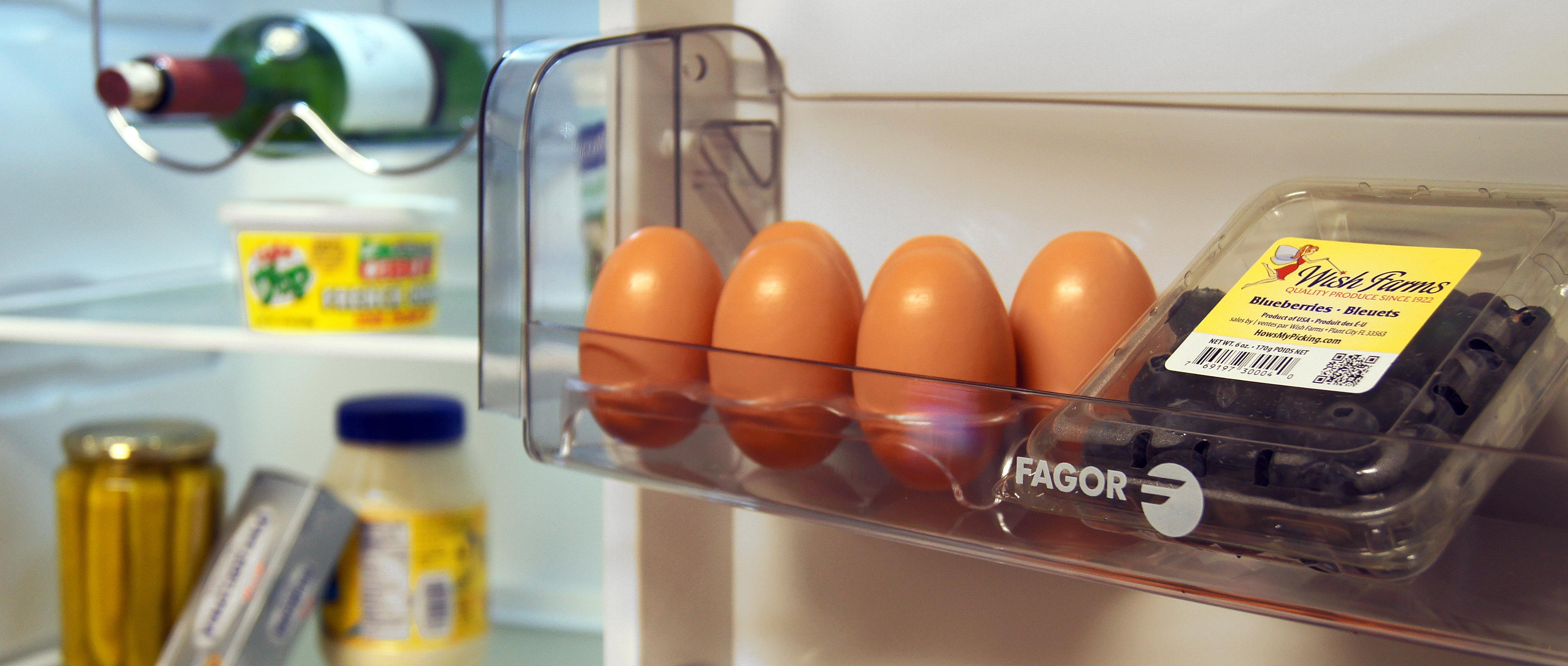 Fagor FFJA4845 Bottom Freezer Apartment Refrigerator