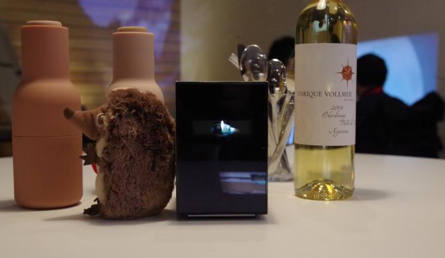 Sony Portable Projector Concept
