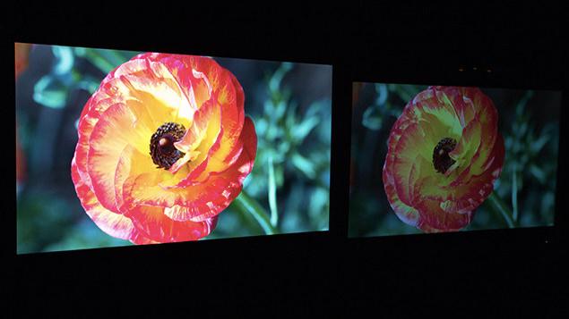 Dolby-monitor.jpg