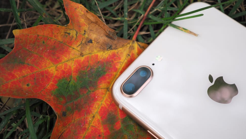 iPhone 8 Plus Dual Camera