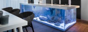 Kolenik aquarium kitchen island hero