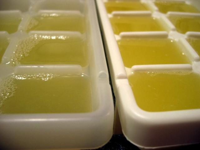 lime juice cubes.jpg