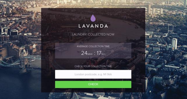 Lavanda Pick Up Time