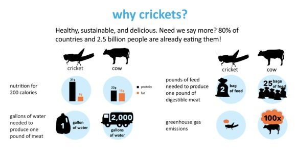 six-foods-chirps-why-crickets.jpg