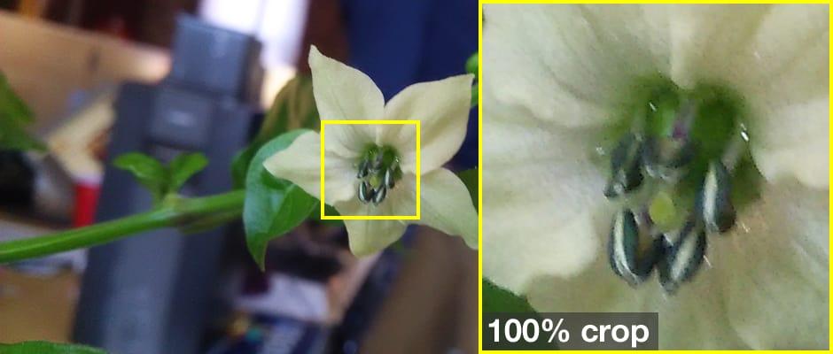 sharp-aquos-crystal-sample-crop.jpg