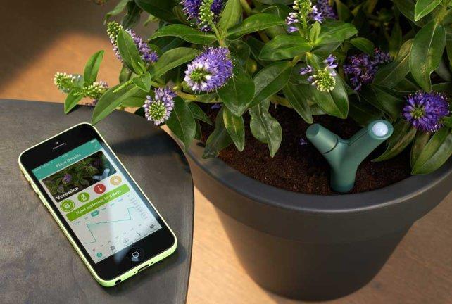 Parrot Flower Power Plant Sensor