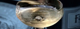 Champagne coupe 1