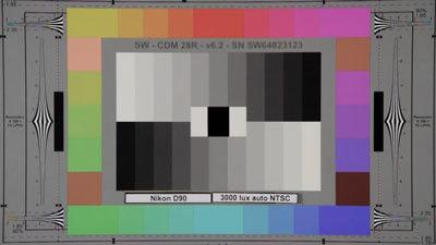Nikon_D90_3000lux_auto_NTSC_web.jpg