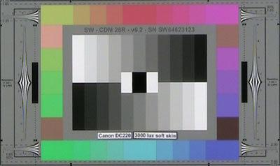 Canon_D220_3000lux_softskin_web.jpg
