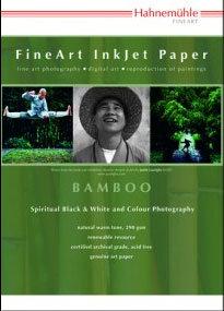 Hahnemuhle-Bamboo-290.jpg